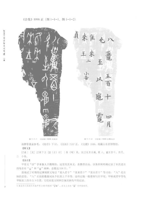 殷墟甲骨文书体分类萃编